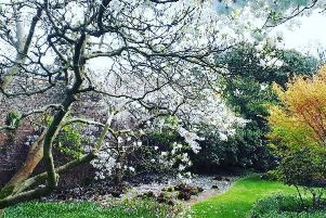 Mulgrave Castle opens up spectacular gardens this Sunday