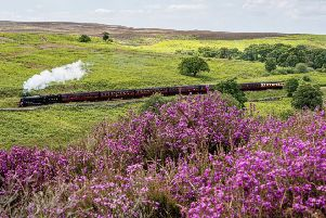 Steam train on the North Yorkshire Moors Railway.'picture: Charlotte Graham.