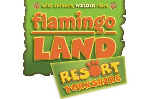 Flamingo Land for wild animals and wilder riders - save up to HALF PRICE on family tickets with our special reader offer