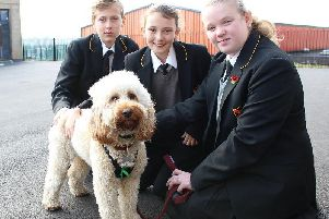 Therapy dog Arlo with pupils at St John Fisher RC High School