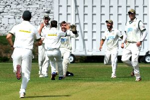New Farnley players celebrate another wicket this season.
