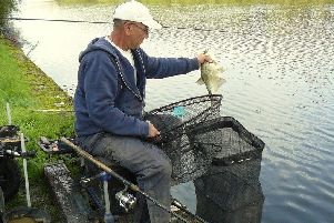 Leeds' Mick Doyle with the size of hybrid that are his target fish on the Winter Leagues below York.