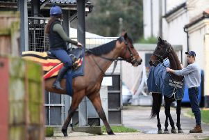 Out of the yard: Stable staff working at Kremlin House Stables, Newmarket.