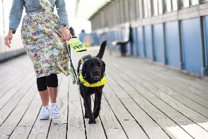 Guide Dogs is calling on volunteers. Picture shows Angie Flake and Guide Dog Nick. 'Picture: Guide Dogs