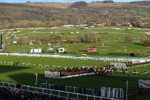 All systems go: Cheltenham passed an early inspection.