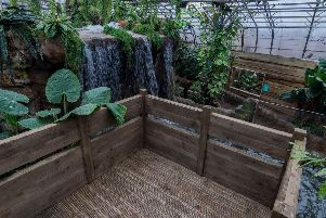 There are a wealth of intriguing sights to be seen at Tropical World