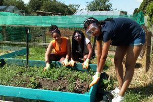 Volunteers tending one of the plots at Killingbeck Allotment Association. Picture: Jess Duggal