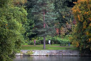 There are currently around 2,100 Tree Preservation Orders in place in Leeds dating back to 1945.