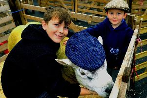 Brothers Hayden, nine, (left) and Kitson, four, from Swinton looking at a Texel tup at the Masham Sheep Fair. Picture by Gary Longbottom.