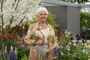 Dame Judi Dench was among the visitors to Welcome to Yorkshire's show garden at the RHS Chelsea Flower Show 2019  (Photo by Jeff Spicer/Getty Images)