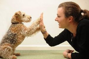 People are more likely to insure their pets for ill health than themselves