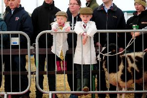 Two young sheep handlers look on at the ringside at Countryside Live in Harrogate. Picture by Simon Hulme.