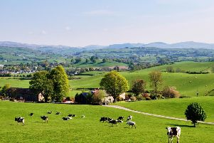Just eight per cent of housing in rural areas can be classed as affordable, compared to 20 per cent of urban housing, according to The Princes Countryside Fund. Picture: University College of Estate Management/Getty Images.