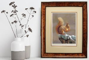 Framed prints are available