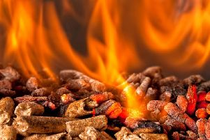 A high proportion of the country's biomass comes from Yorkshire, the JPIMedia data unit has revealed