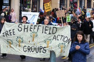 There have been ongoing protests against Sheffield Council's tree-felling strategy in recent years.