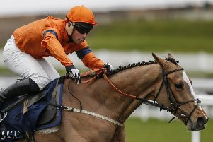Sam Spinner is unbeaten from three starts over fences for jockey Joe Colliver and trainer Jedd O'Keeffe.