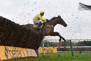 Betfair Chase winner Lostintranslation will head straight to the Cheltenham Gold Cup, says assistant trainer Joe Tizzard.