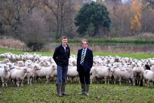 Sheep farmer Alistair Trickett who has been awarded a Nuffield Scholarship funded by the Yorkshire Agricultural Society. He is pictured with Nigel Pulling.