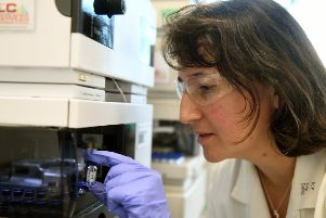 Dr Kirsty Penkman  working in a chemistry lab at York University  checking on  fossil samples separated by molecules.