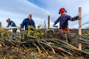 The CS scheme provides funding for environmental improvements such as hedge laying and restoring natural habitats and managing flood risk.