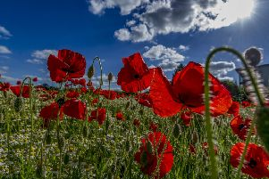 As Britain falls silent to remember the Battle of the Somme, we must recognise, says Dan Jarvis, that it is a measure of our common humanity that we must ensure it never happens again.