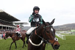 WINNERS: Altior and jockey Nico de Boinville after winning the Queen Mother Champion Chase at Cheltenham in March. Picture: David Davies/PA
