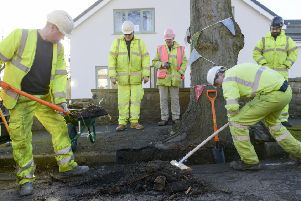 Workers from Amey prepare the road around  a tree on Chatsworth Road in sheffield for remedial work