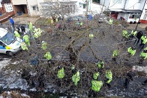 Police at one of Sheffield's tree felling sites in 2018.