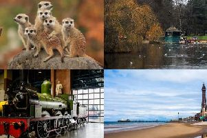 The North of England has a variety of fun activities which make for a fun-filled day out