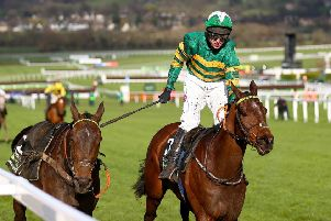 Mark Walsh and Espoir D'Allen are chased home in the Champion Hurdle by the riderless Buveur D'Air.