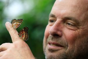 The Tropical Butterfly House Wildlife And Falconry Centre in North Anston is celebrating its 25th birthday this year. Pictured is Andrew Reeve. Picture: Chris Etchells
