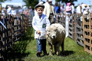 Agricultural shows are part of the heartbeat of Yorkshire.
