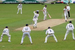 Driving force: Yorkshire's Stephen Petterson is driven by Essex's Tom Westley.