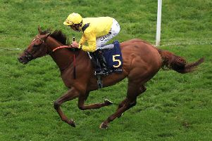 Addeybb was an impressive winner at Royal Ascot for jockey Danny Tudhope and trainer William Haggas.