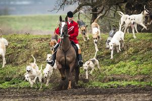 The Countryside Alliance says a political desire to ban hunting is not matched by public support.