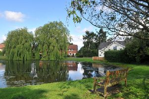 Tholthorpe village green and pond. Picture by Gary Longbottom.