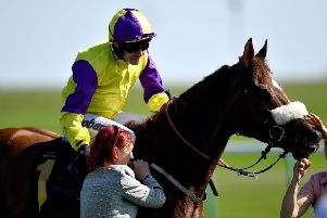 Brando - the mount of Tom Eaves - leads Kevin Ryan's quest to win the Haydock Sprint Cup.