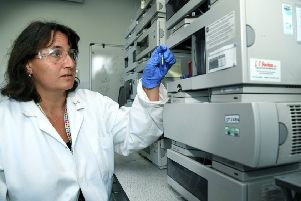 Dr Kirsty Penkman with fossil samples in the Department of Chemistry at University of York.