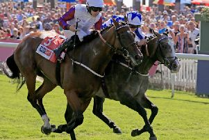 PJ McDonald and Laurens (near side) narrowly lost out to Shine So Bright at York's Ebor festival.
