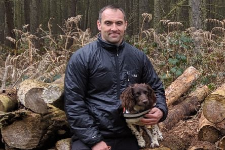 Training session: Search and rescue dog Jessie with handler John Hutchinson.