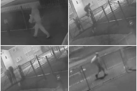 A hooded figure and a possible accomplice were caught on CCTV camera at Kincraig Primary School, where around 1,000 cartons of milk have been stolen over the last four months