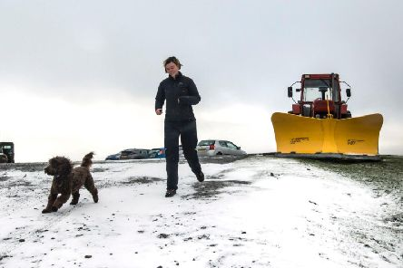 Vets warn over salt and grit dangers to pets
