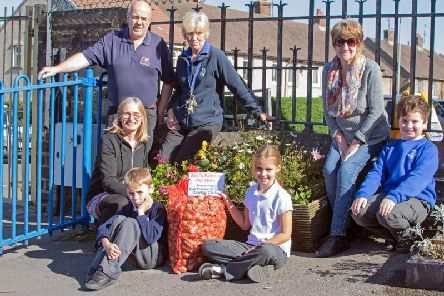 The daffodil bulb presentation at Park Primary School in Colne (Photo by Naz Alam)