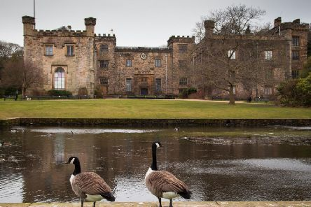 Burnley's Towneley Hall is the venue for a professional floral demonstration later this year.