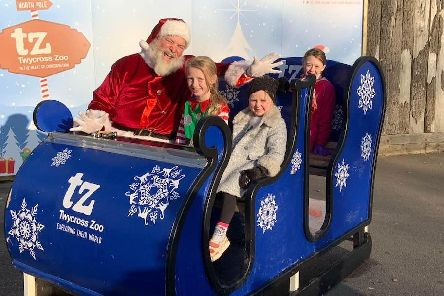 Sisters, from right, Sophie, aged 10, Rebecca, five, and eight-year-old Jessica Ball enjoy a selfie with Santa in his sleigh at Twycross Zoo.