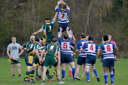 Mansfield Rugby Club in action.