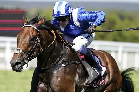Top sprinter Battaash, who is strongly fancied for one of the big races on the first day of Royal Ascot (PHOTO BY: Alan Crowhurst/Getty Images).