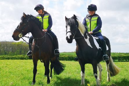 Solero and Darcy are the first horses to be taken out for a ride at Bransby Horses' new rehoming training site at Langworth.