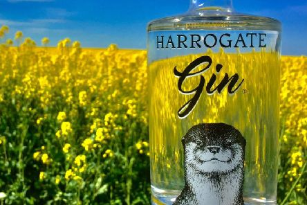 Gin treat at Ripley Castle - Harrogate Tipple will be among the great gins on offer.